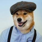 menswear-dog-01
