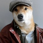 menswear-dog-04