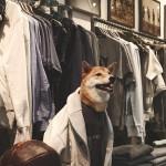 menswear-dog-06