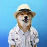 menswear-dog-09