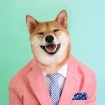 menswear-dog-11