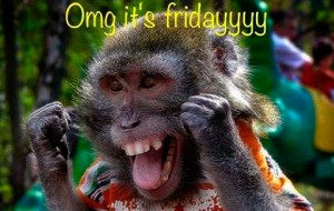 43658-Omg-Its-Friday