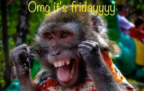 43658-Omg-Its-Friday