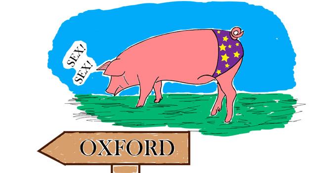 cameron-cerdo-revista-don-perraca-abisal