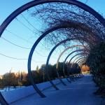 ruta-madrid-quinqui-parque-03