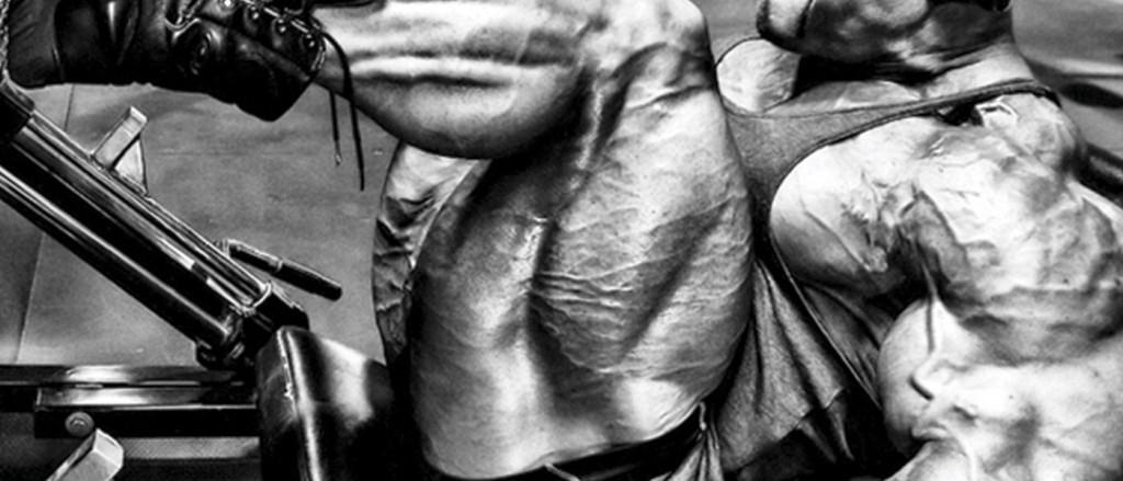 musculocas5